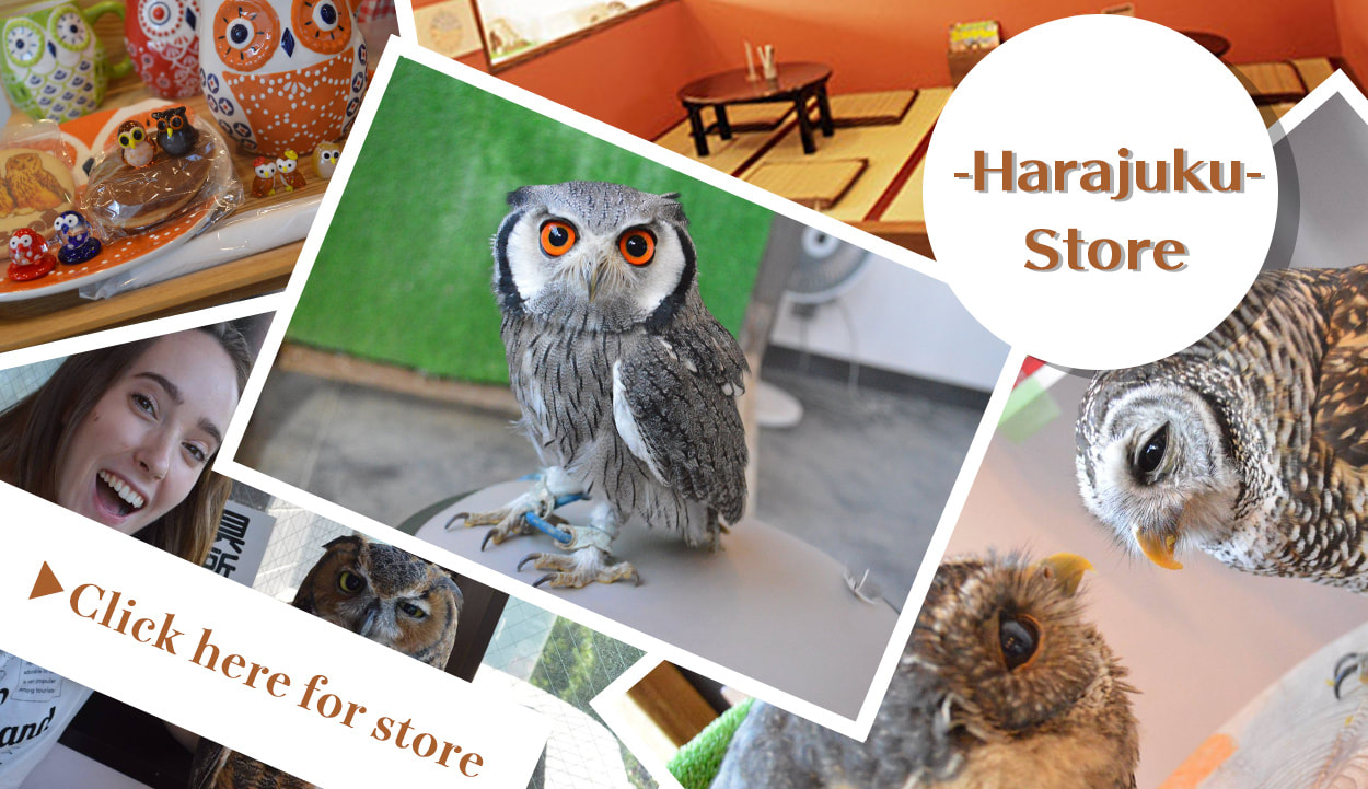 Move to the owlcafe Harajuku store page About us